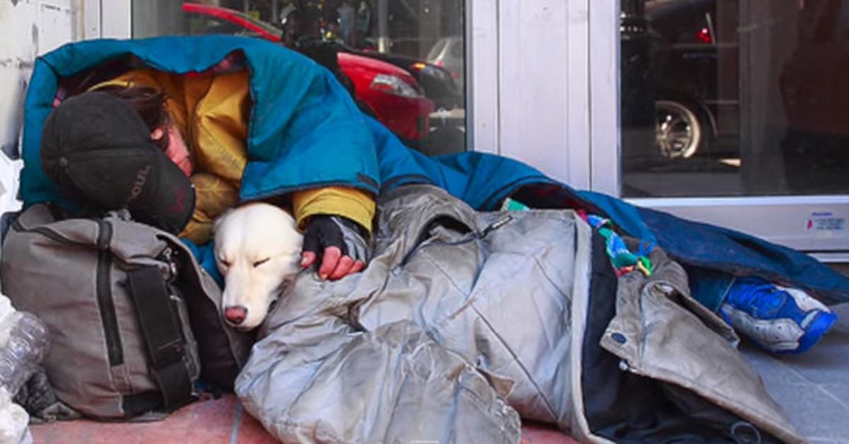Krótki, ale poruszający filmik o bezdomnych i ich zwierzakach. To wideo zmienia podejście ludzi