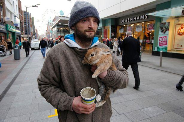 Podbiegł do niego nastolatek, wyrwał królika i zrzucił z mostu. Bezdomny skoczył za nim