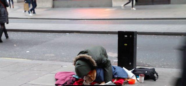 Podarowali psom bezdomnych niezwykły prezent. Nikt nie mógł ukryć wzruszenia