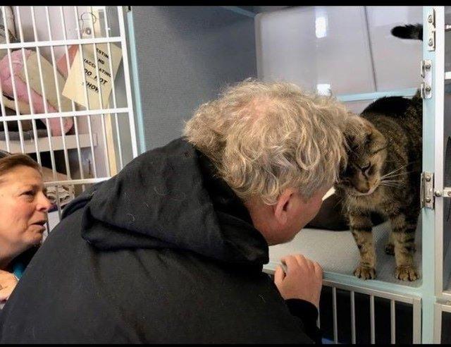 Oglądając kota w schronisku, poczuła, że dobrze go zna. Jej serce zaczęło walić jak szalone
