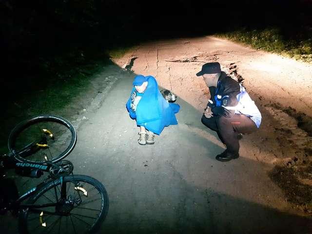 Ranny rowerzysta leżał przy drodze. Życie uratował mu bezdomny pies