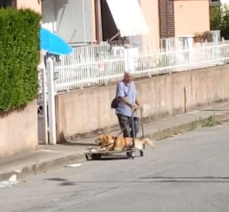 Ten starszy pan i jego niepełnosprawny pies poruszyli ludzi z całego świata