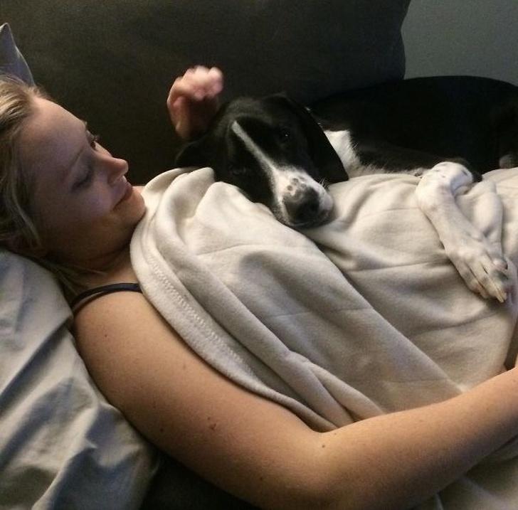 Właśnie tak wygląda bezinteresowna miłość psów. One wiedzą, jak powinno się kochać