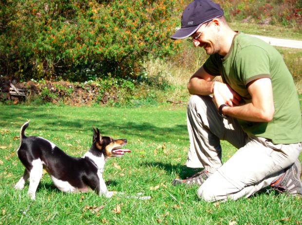 Wołasz psa, a on ma cię w nosie? Popełniasz pewien błąd