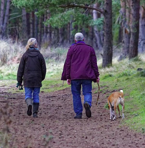 6 sposobów na oszczędzenie zwierzakowi stresu podczas Sylwestra