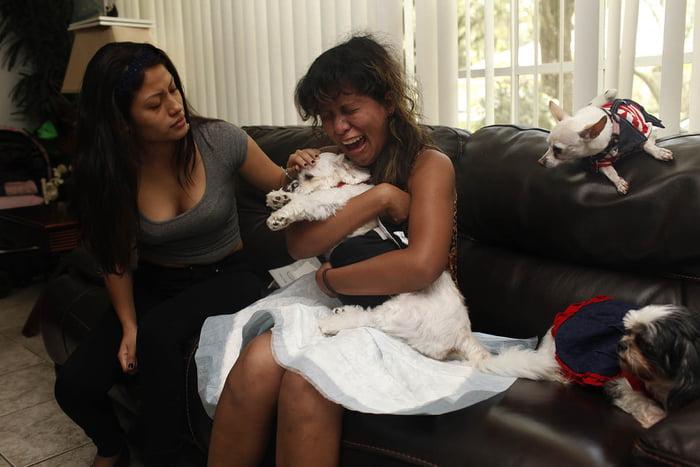 Opiekunowie żegnają swoje ukochane zwierzaki. Te zdjęcia łamią serce na tysiące kawałków