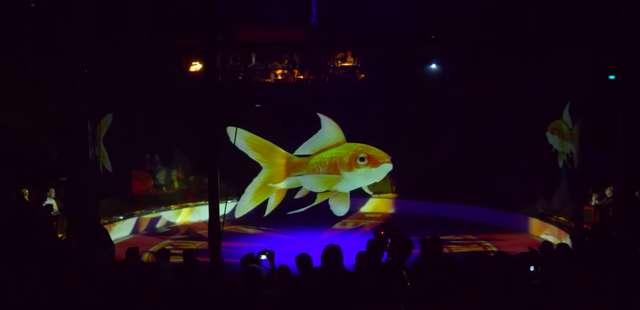 Ten cyrk używa hologramów aby nie męczyć prawdziwych zwierząt