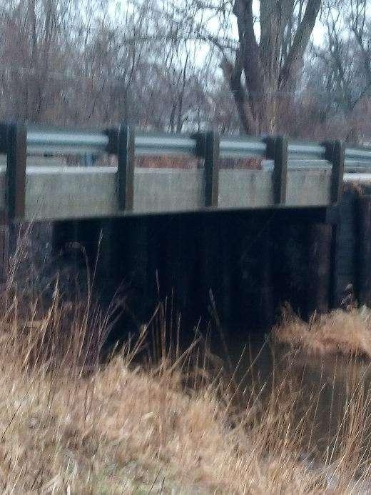 Przerażające odkrycie w czasie spaceru: szczeniak pod mostem z pyszczkiem owiniętym taśmą