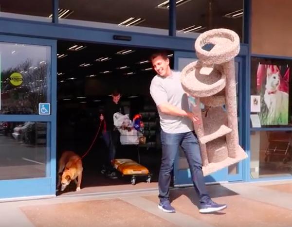 Zabrał starszego psa ze schroniska do sklepu. Kupił mu wszystko, czego dotknął swoim nosem