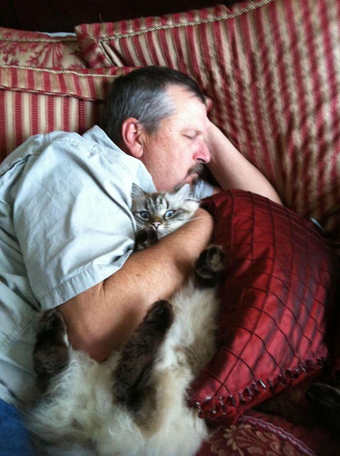 30 osób, które powiedziały, że za nic w świecie nie chcą widzieć kota w swoim domu