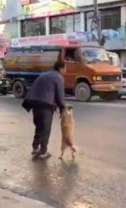 Pies chwyta opiekuna za rękę i przechodzi przez ulicę. Ludzie przecierają oczy ze zdziwienia