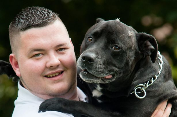 Pies uratował człowieka