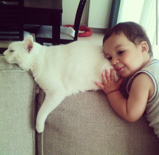 Słodkie zdjęcia dzieci i kotów