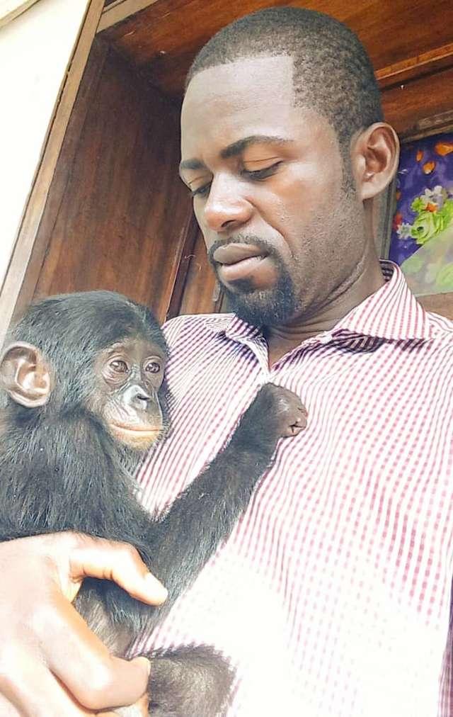 Mały bonobo i mężczyzna