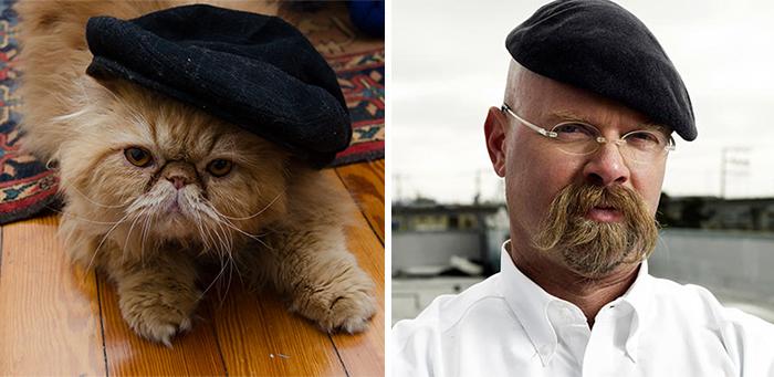 30 kotów, które do złudzenia przypominają różne osoby i rzeczy. To się nazywa podobieństwo!