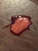 Pies wymiotuje krwią