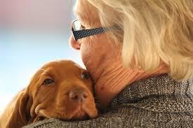 Zalety posiadania psa, przytulanie z psem