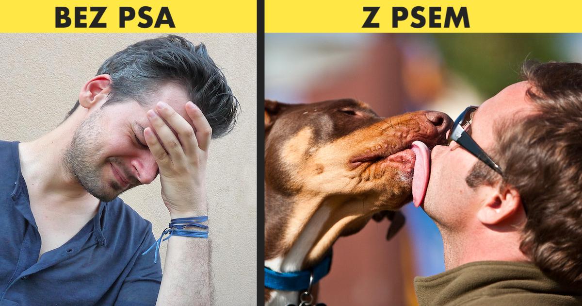 Zalety posiadania psa