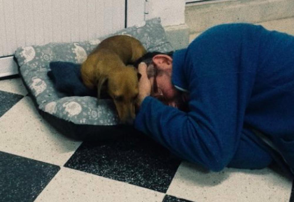 19 panów, którzy zarzekali się, że nie chcą psa. Zdanie zmienili bardzo szybko