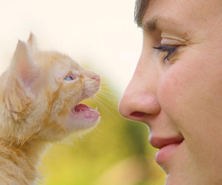 Kobieta i kot