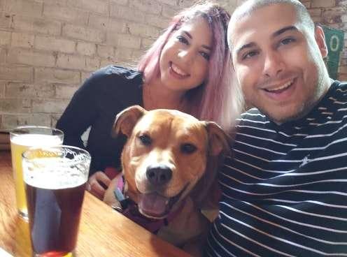 Odkrył, co jego dziewczyna robi z psem w czasie, gdy nie ma go w domu