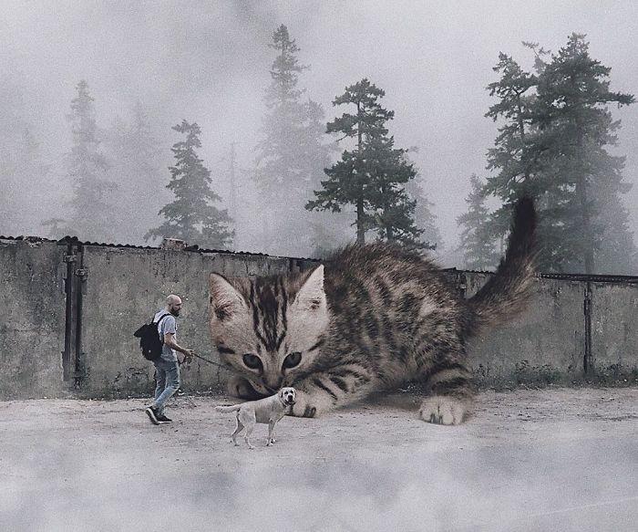 Właśnie tak wyglądałby świat, gdyby koty były znacznie większe niż w rzeczywistości