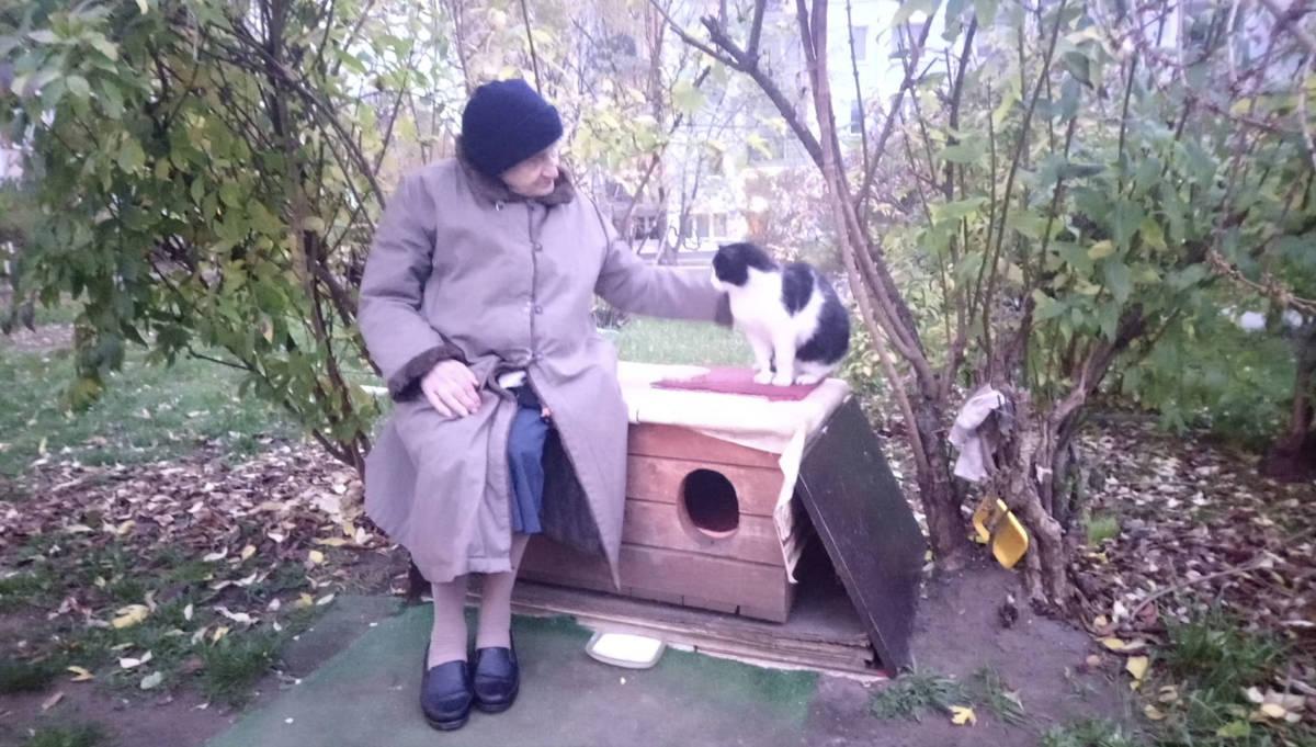 Ma 98 lat, ale to nie powstrzymuje jej przed pomaganiem kotom. Poświęciła im życie