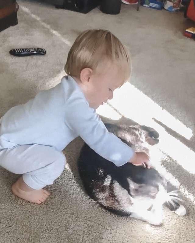 Przyłapała kota w pokoju synka. Nie mogła powstrzymać śmiechu, kiedy usłyszała, jak rozmawiają