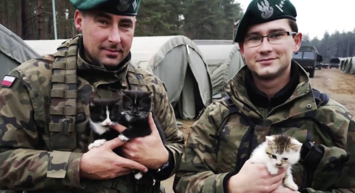 Żołnierze ćwiczyli na poligonie. W lesie znaleźli karton, z którego dobiegały ciche jęki