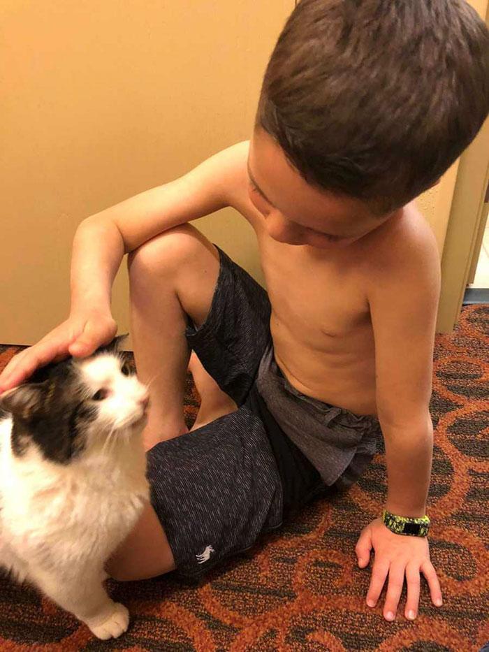 Urodził się z rozszczepem i heterochromią. Po 7 latach znalazł podobnego do siebie kota