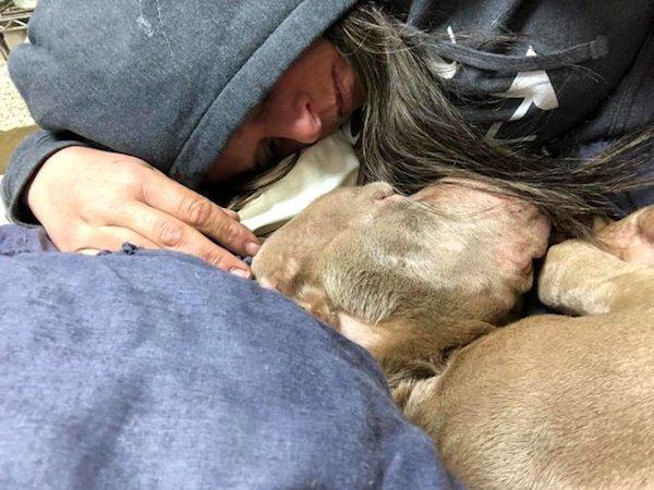 Bierze w ramiona psa ze schroniska i tuli całą noc. Nad ranem zwierzak umiera