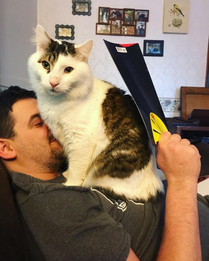 22 zabawne zdjęcia, które dowodzą, że życie bez zwierzaków byłoby zwyczajnie nudne