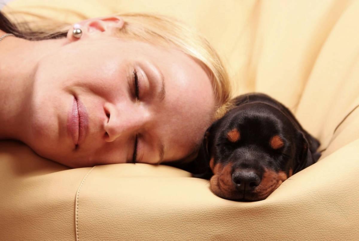 Kobiety wysypiają się bardziej, śpiąc z psem aniżeli z mężczyzną. Potwierdzają to badania!
