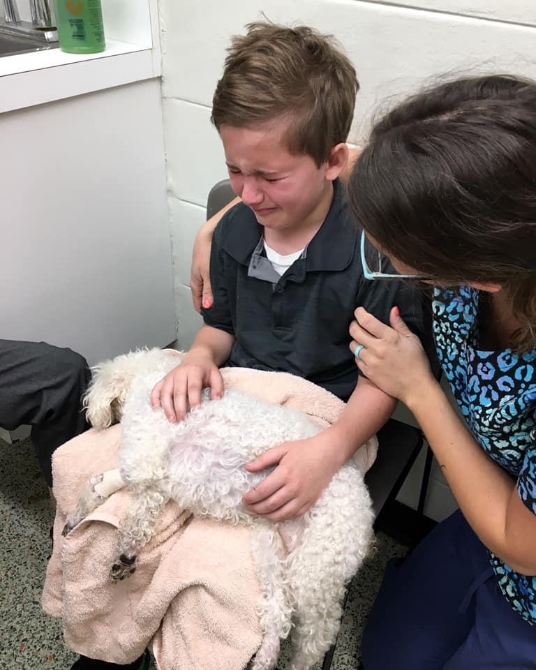 Adoptowany chłopiec płacze, kiedy jego pies jest usypiany. Później wyznaje mamie prawdę