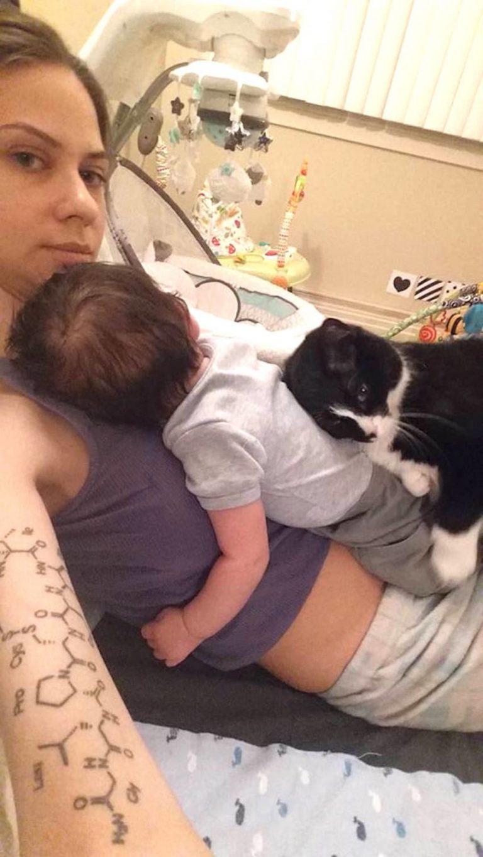 Adoptowana kotka ze schroniska całkowicie się zmieniła, gdy właścicielka zaszła w ciążę
