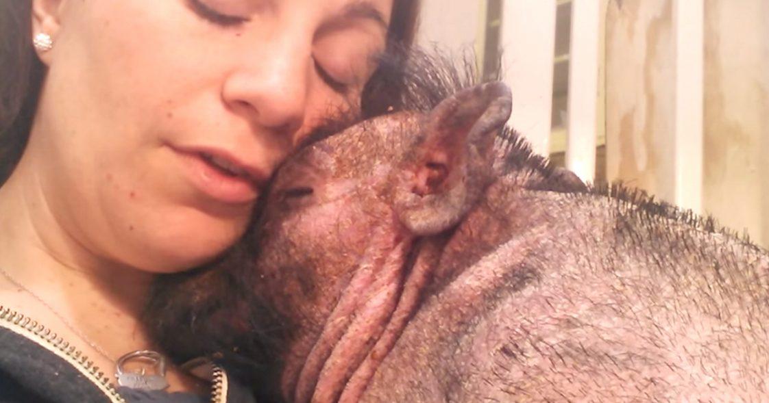 Kobieta śpiewa choremu zwierzęciu w szpitalu. Wideo trafiło do 3 milionów ludzi