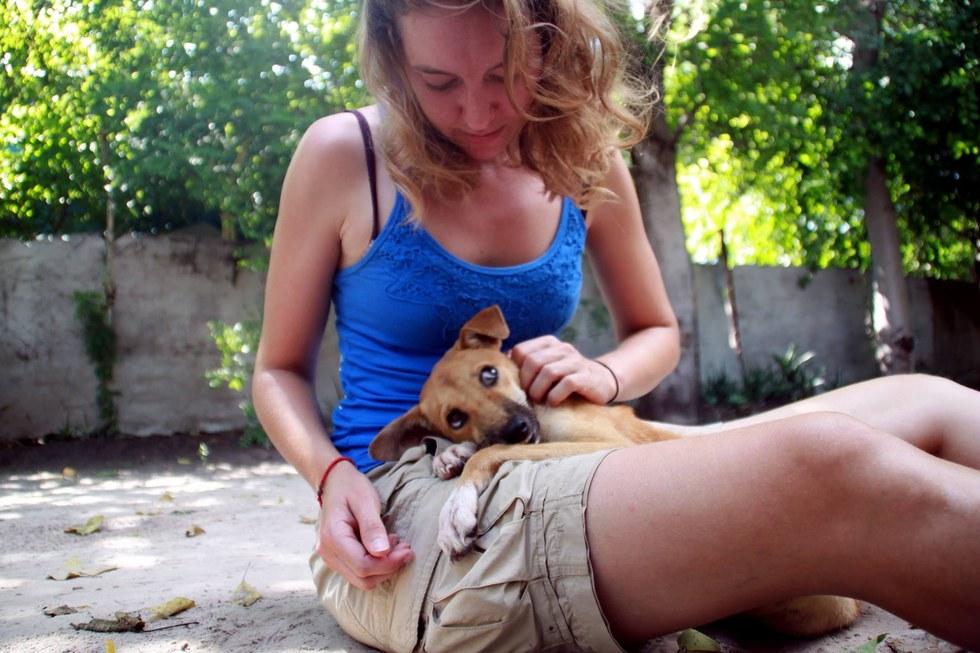 Sparaliżowany szczeniak doczołgał się do lecznicy. Nie miał już siły podążać dalej