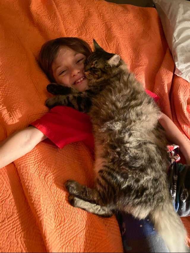 Ten wyjątkowy kot nie zaśnie, jeśli nie przytuli swojego ulubionego człowieka