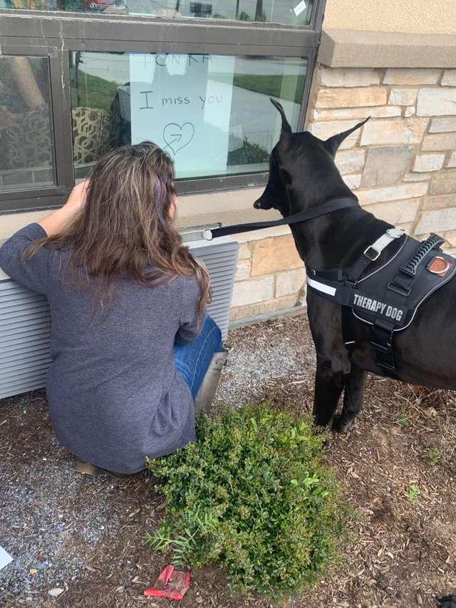 Wyjątkowy pies odwiedza seniorów poddanych kwarantannie. Jego widok wywołuje łzy radości