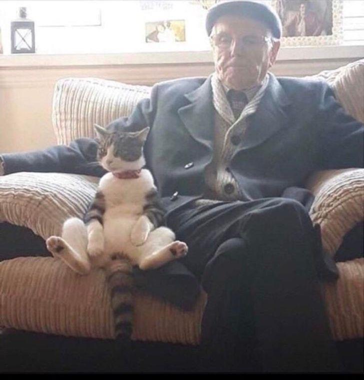 kot z dziadkiem