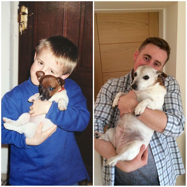psy na przestrzeni lat
