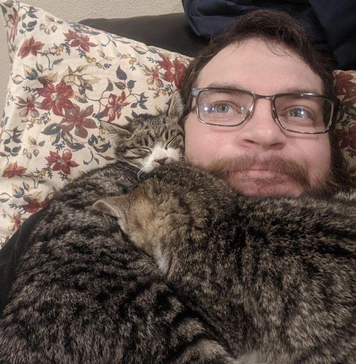 dwa koty leżą na człowieku