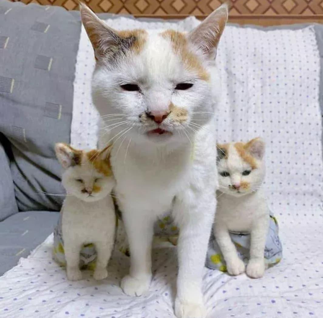 Kotka z małymi