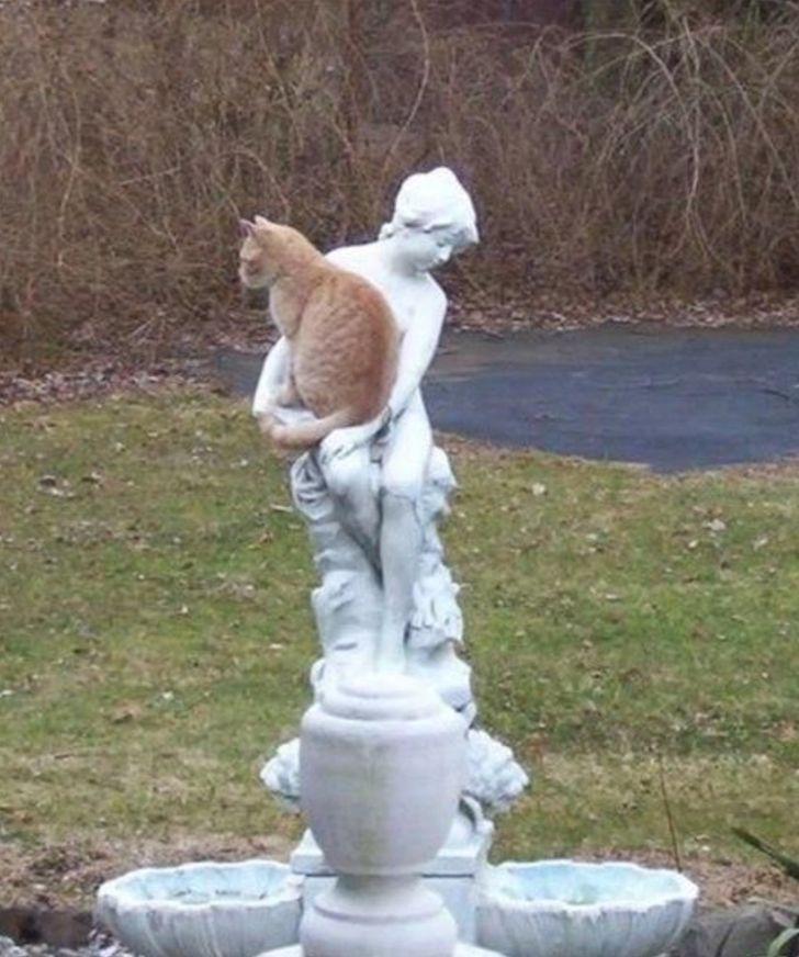 kot na rzeźbie