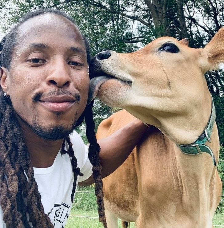 17 uroczych zdjęć, które udowadniają, że głównym składnikiem zwierzaków jest miłość