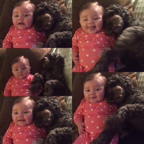 Jest pewna, że jej córka spłonęła w pożarze domu, ale w ostatniej chwili ratuje ją pies bohater