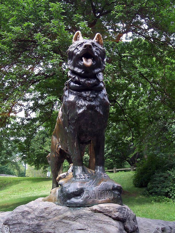 10 pomników, które zbudowano na cześć wyjątkowych zwierząt aby ludzie zawsze o nich pamiętali