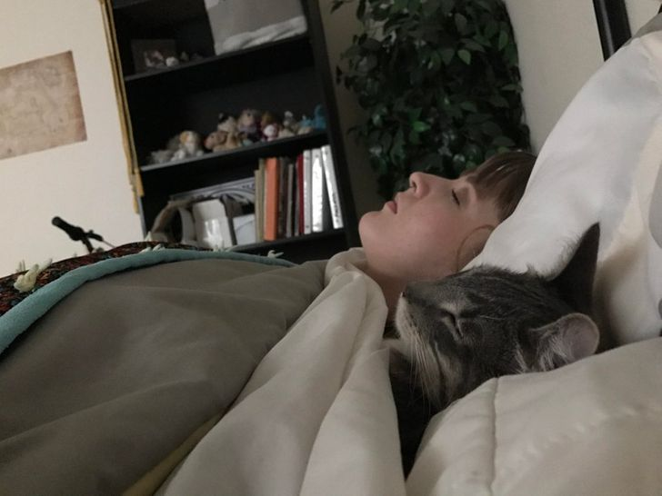 Jeśli kiedykolwiek poczujesz się smutny, to te 30 śpiących kotów sprawi, że się uśmiechniesz
