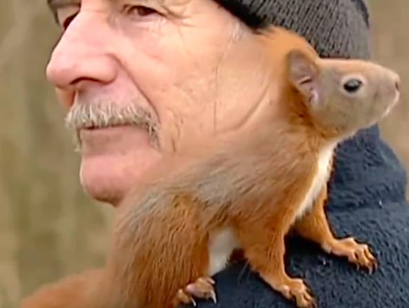 Pan Tadeusz i jego wiewiórka stali się światowym hitem. Ich filmik ma już ponad 58 mln odsłon