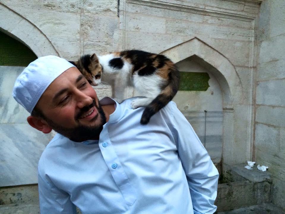 Mężczyzna otworzył drzwi meczetu dla bezdomnych kotów. Daje im ciepło i schronienie